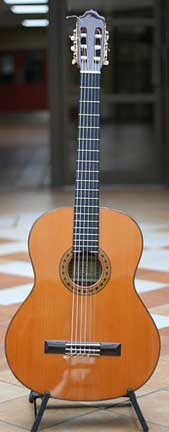 Baritone - Tuned to a perfect 4th lower than the standard guitar